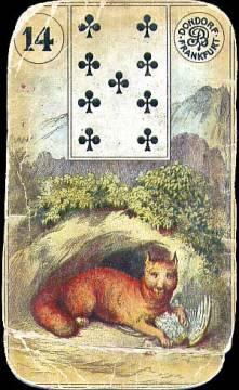 14-foxhole