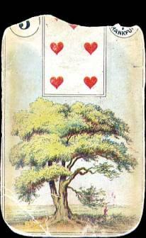 05-tree